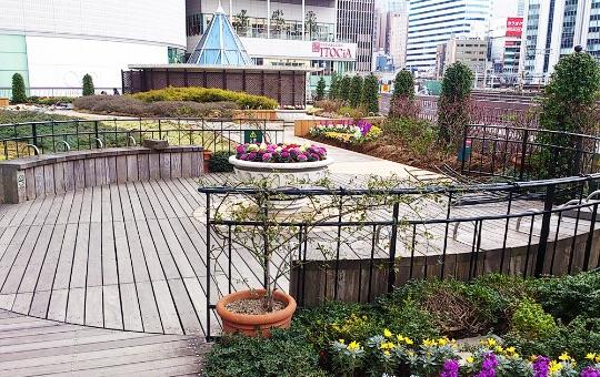 3Fの屋上庭園「有楽町コリーヌ」